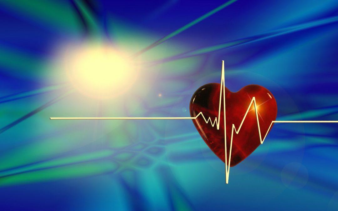 Acudimos al XV Congreso de la Sociedad Andaluza de Cirugía Cardiovascular